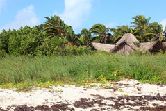 Hut on the island. Of Cayo Guillermo. Cuba Stock Image