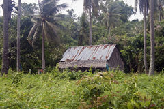 Hut in a jungle Royalty Free Stock Photo