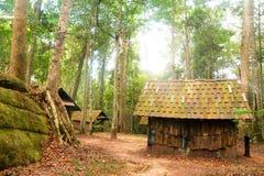 Hut in jungle Stock Image