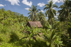 Hut in jungle Royalty Free Stock Photo