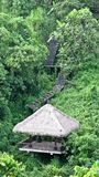 Hut in the jungle Royalty Free Stock Image