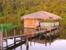 Hut in the lake. Typical Amazonian house or hut Royalty Free Stock Image