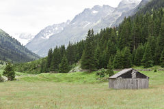 Hut in the meadow Royalty Free Stock Photos
