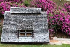 Hut met Bougainvilleaachtergrond Stock Afbeeldingen