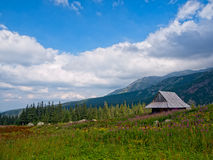 Hut in Mountains Royalty Free Stock Photo