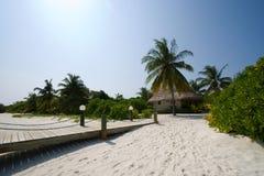 Hut op het tropische eiland Stock Foto's