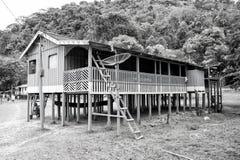 Hut op houten stapels in dorp in wildernissen stock foto's