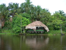 Hut on  Orinoco river. River hut in orinoco delta, Venezuela Royalty Free Stock Photography