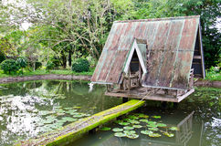 The hut over lotus swamp. In the garden Royalty Free Stock Images