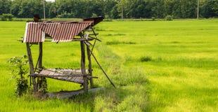 Hut in padieveld op de dag royalty-vrije stock foto