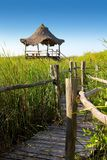 Hut palapa in mangrove reed wetlands Royalty Free Stock Photos