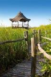 Hut palapa in mangrove reed wetlands Royalty Free Stock Photos