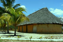 Hut and palm Royalty Free Stock Photos