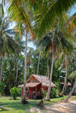 Hut in a palm grove Royalty Free Stock Photo