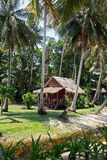 Hut in a palm grove Stock Images