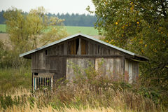 Hut on the pond Stock Photo
