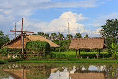 Hut and rice field Royalty Free Stock Photography