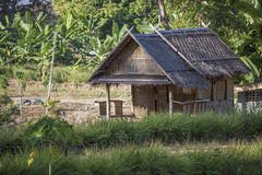 Hut on the road in the jungle with palm trees Royalty Free Stock Image