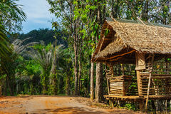Hut on the road in the jungle  on the  Phuket in Thailand Royalty Free Stock Images
