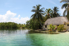 Hut on the shores of the Caribbean. Photo was taken on the Caribbean Sea off the coast of Cuba, pictured house with palm trees on the beach royalty free stock images