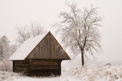 Hut in the snow. An old wooden hut in the snow with a tree on the side Stock Photo