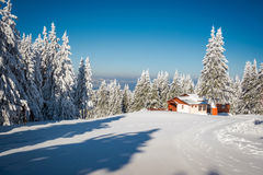Hut in the snow and snowy white trees in the background Stock Photos