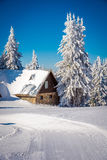 Hut in the snow and snowy white trees in the background Royalty Free Stock Photography
