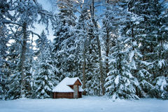 Hut in snowy forest Royalty Free Stock Image
