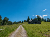 Hut in the Swiss mountains with a meadow and road Stock Image