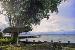 Hut under Banyan tree on the beach royalty free stock photo