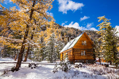 Hut under the snow in the winter forest Royalty Free Stock Photography