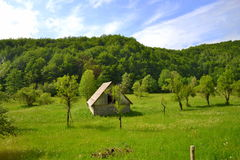 Hut in the wilds Stock Image