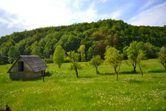 Hut in the wilds Stock Photography