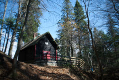 Hut in the woods Royalty Free Stock Photography