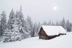 Hut in the Woods. Winter landscape with a hut in the forest. Ukraine, Carpathian Mountains Royalty Free Stock Photos