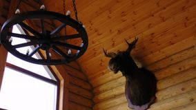 A huting house a deer head. A scarecrow a log house Royalty Free Stock Images