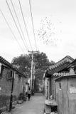 Hutong在老北京市 图库摄影