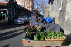 Hutong de Pékin Photo stock