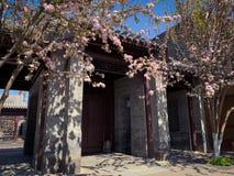 Hutong en allery in Peking royalty-vrije stock foto's