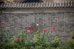 Hutong kultura Pekin siedziba w Shichahai Pekin Zdjęcia Stock