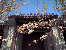 Hutong und allery in Peking lizenzfreies stockbild