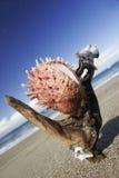 Huître sur le rivage Photo libre de droits