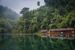 Huts on banks of river in rainforest