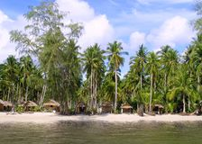 Huts and Coconut palms Royalty Free Stock Image