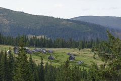 Huts on hillside, Apuseni Mountains, Romania royalty free stock images