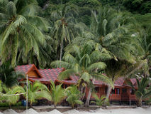 Huts in Jungle by beach Royalty Free Stock Photography