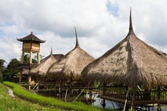 Huts in Rice Paddies Stock Photos