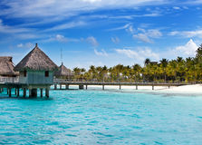 Huts in the sea and a palm tree Stock Images