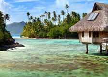 Huts in the sea and a palm tree Royalty Free Stock Photography