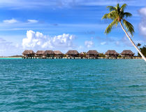 Huts in the sea and a palm tree.Sea tropical landscape in a sunny day Stock Photos